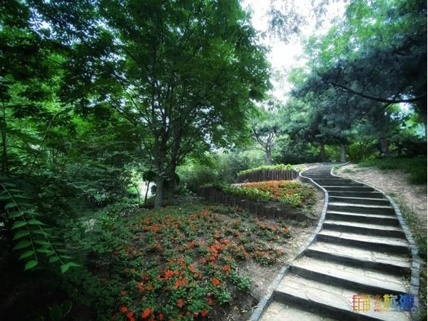 入园只需2毛!北京这个公园,可能是中国最便宜的景点了