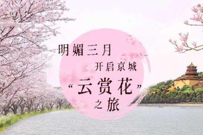 """明媚三月,开启京城""""云赏花""""之旅"""