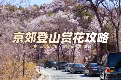 京郊登山赏花攻略