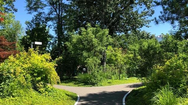 二环最大城市森林,不出城即可感受原始大自然,还有小雏菊清新绽放