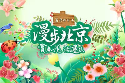 漫步北京赏春花读建筑