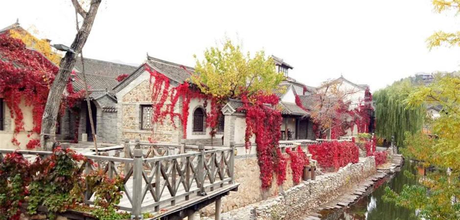 太驚艷!北京這個地方又到了一年中最美的時刻!錯過再等一年!