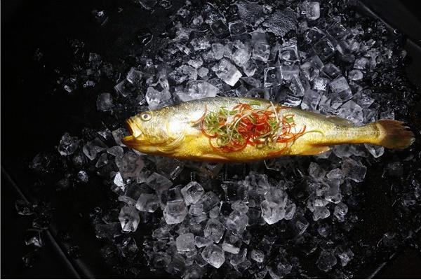 """黄袍加?#21543;懟?#30340;美味,深海半野生大黄鱼新鲜来袭,先到""""鲜""""得!"""