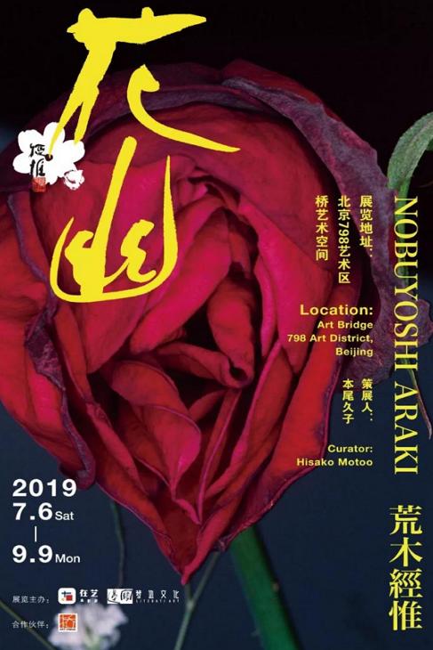 畅享文艺生活,京城八月热门展览大盘点
