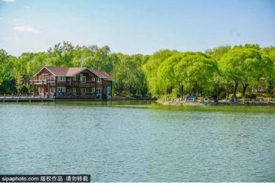奥森隔壁竟然藏着一个绝美的宝藏公园!人少还免费!99%的北京人都不知道!