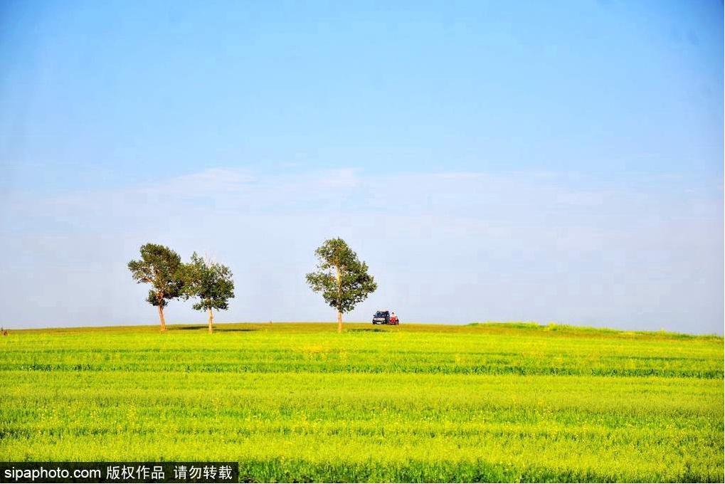 一路开车奔向草原,原来夏天可以如此奔放!