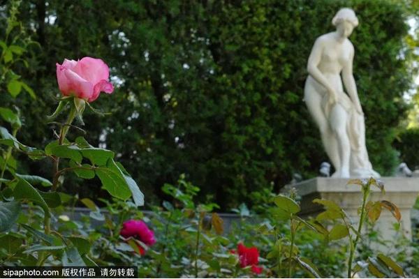 北京2环竟藏着一座近10万㎡的欧洲园林,堪比古罗马,关键还免费!