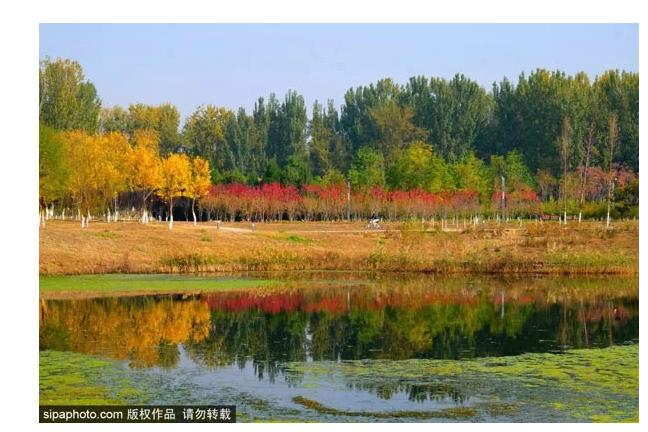 比颐和园大,比奥森好玩,北京这处免费公园还鲜为人知!