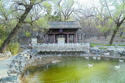 运河,塑造着北京的城市面貌,见证着千百年的时光变迁