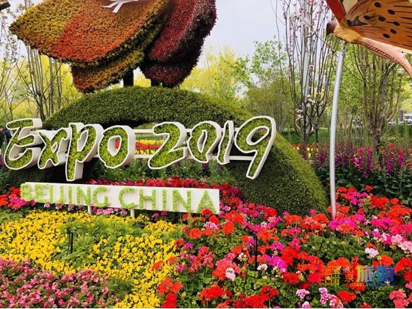 北京世園會:一日看盡世間花