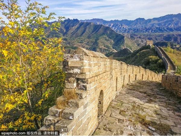北京周边秋天最勾魂的色彩都被这里承包了,一眼沦陷,太太太美了!