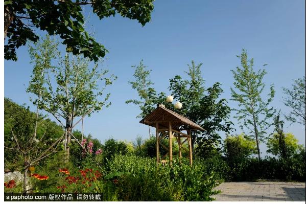 距离北京最近的避暑山庄,不在承德,在三河!林中竹屋纳凉,美~