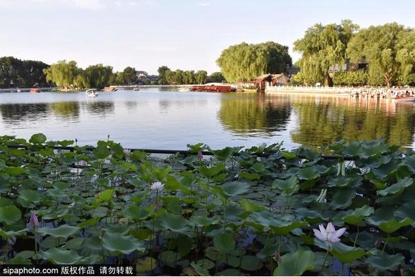 北京五环内免费景区,就在家门口!假期结束,接着到这些地方玩