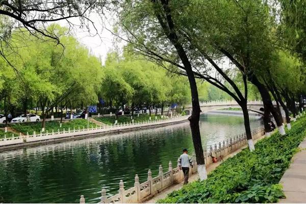 南長河公園郁郁蔥蔥,美景如畫