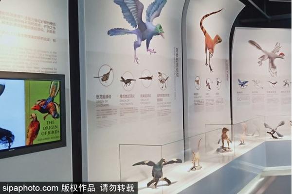 秦皇岛鸟类博物馆参观需实名预约