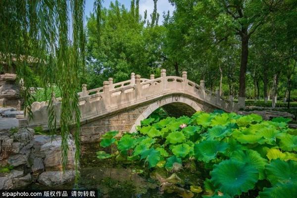 """北京周边竟藏着一座有着百年历史的""""江南园林"""",关键还免费!"""