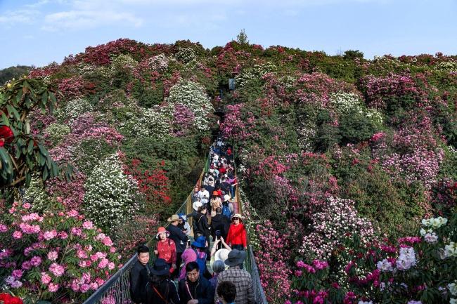 В 2021 году число внутренних турпоездок в Китае составит 4,1 млрд раз