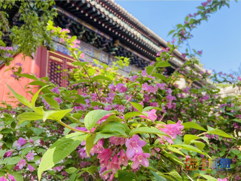 Храм Таньчжэсы (潭柘寺)