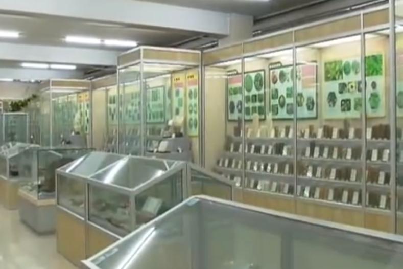 館長說:北京中醫藥博物館
