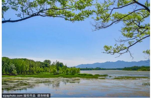 """""""东方莱茵河""""竟然藏在京郊这座又大又美的公园内!关键免费玩!"""