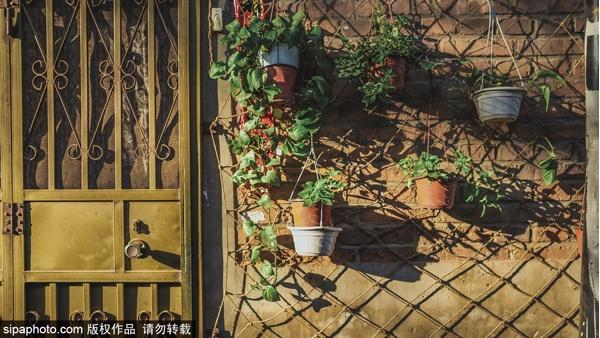 Посещение типичных достопримечательностей, славящихся старым пекинским стилем