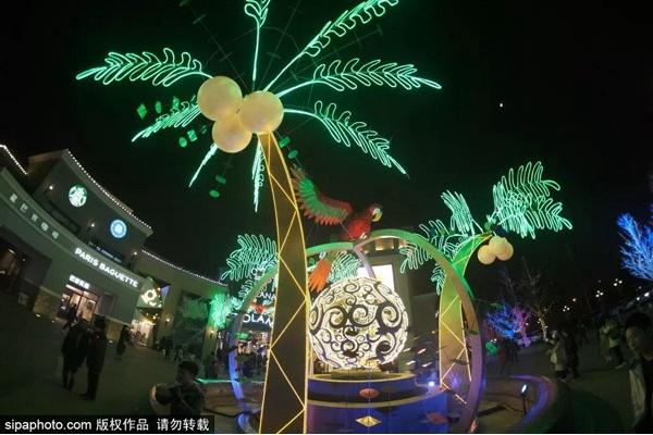 """隔着屏幕已美哭!北京惊现一片""""冬季热带雨林"""",为期73天惊艳京城!"""