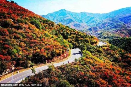 惊艳!北京周边绝美秋景,错过再等一年!