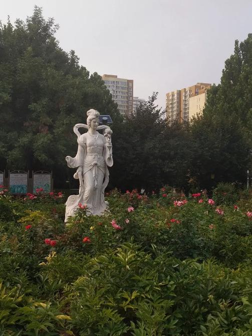 惊艳!玉兰花开了,就在北京四环边上这个免费又好玩的公园!