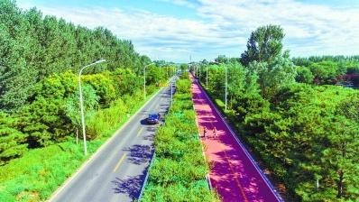 北京城市副中心40余条道路将建慢行系统