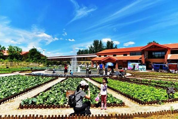 这个中秋节,来意大利农场,让暖暖的心意成为最好的陪伴