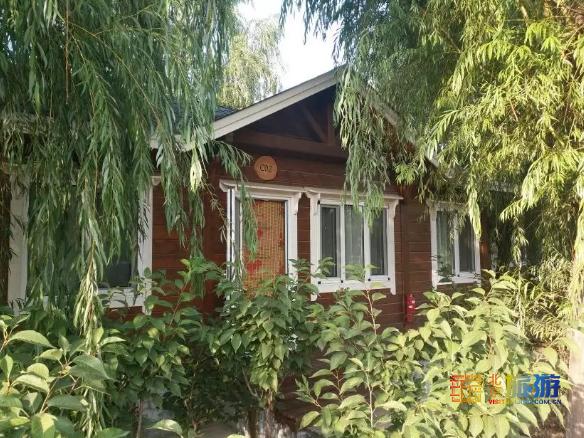 水天相连的滹沱河畔,似锦繁花当中藏着一个木屋小镇!周末放松,最合适!