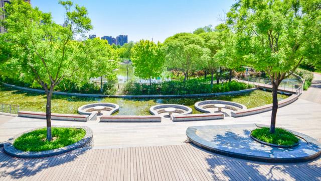 """免费人少、无需预约!北京闹市中竟藏着一个""""世外桃源"""",幽静开阔、绿意浓浓"""