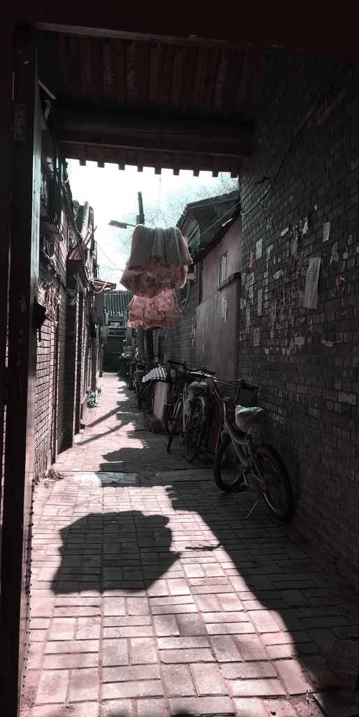 Travel in Shijia Hutong like a Local