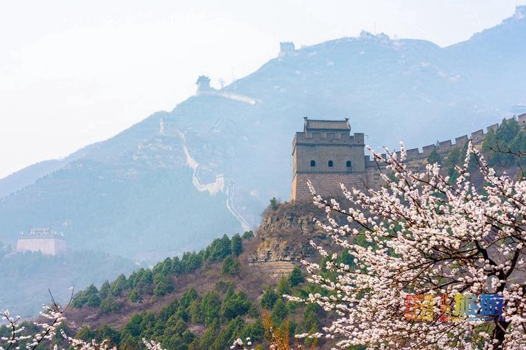 花の香が漂う北京を歩く旅:杏の花篇