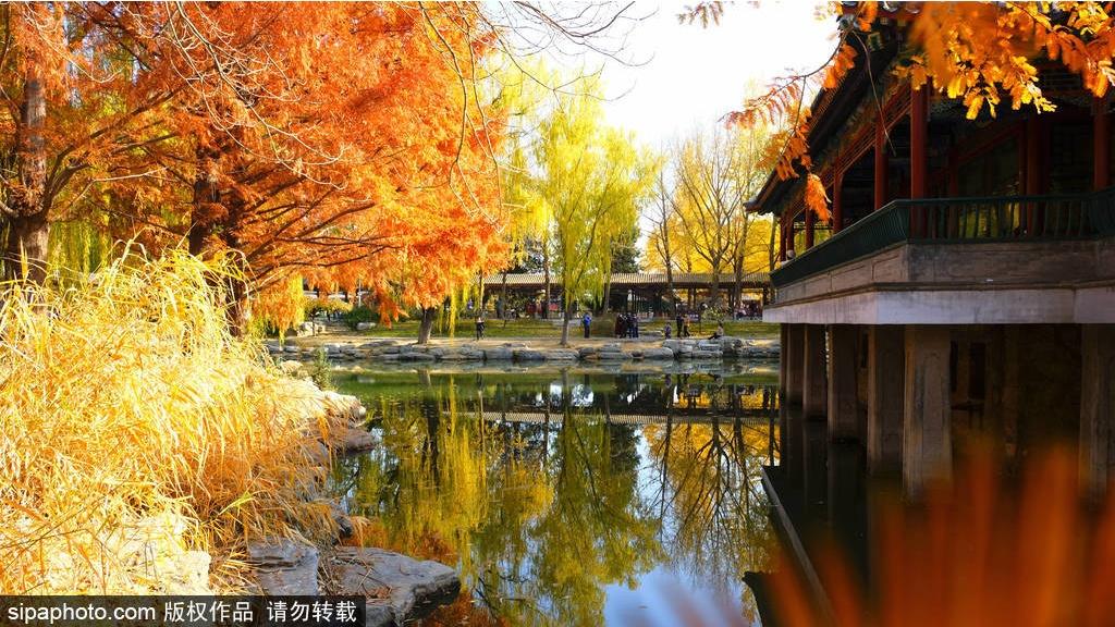 El paisaje oto?al en el Parque Zhongshan