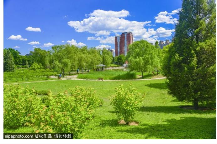 北京这个3A公园已成一片绿色仙境!免费的天然氧吧不容错过!