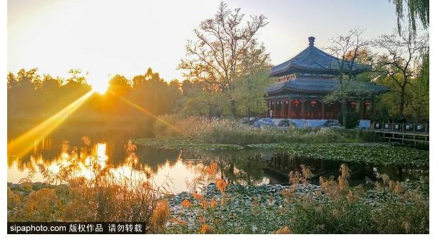皇家園林賞秋,感受最有韻味的秋之風景