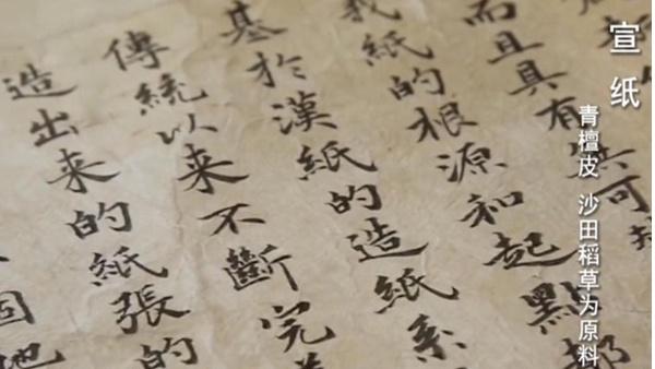 向纸而生:纸张的故事