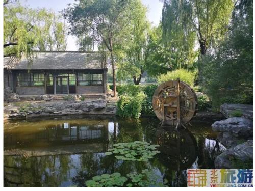 北京市中心藏着一处免费避暑圣地,现实版绿野仙踪,周末走起!