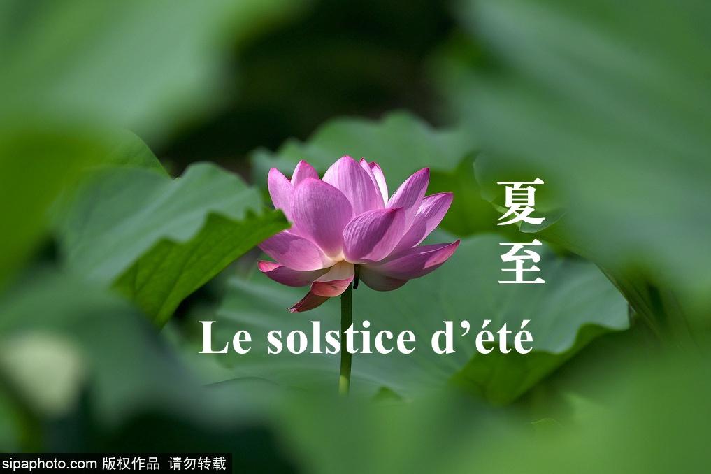 24 périodes solaires —— Le solstice d'été (Xia Zhi夏至)