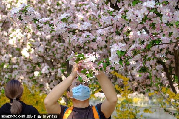 Les premiers lieux de coqueluche d'Internet : Parc des ruines de la capitale de la dynastie Yuan