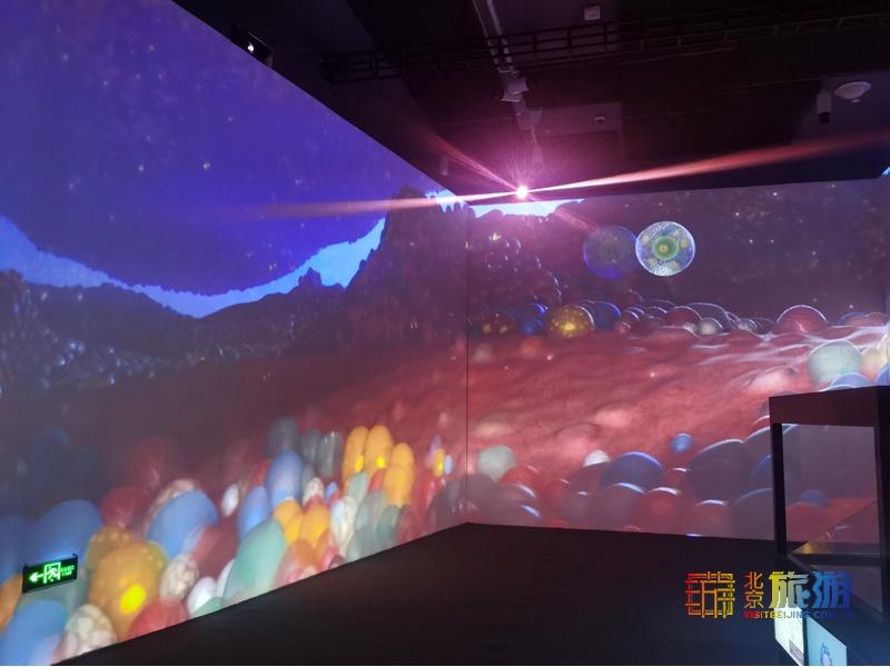 科普藝術沉浸展《生命奇旅》近日亮相798藝術中心