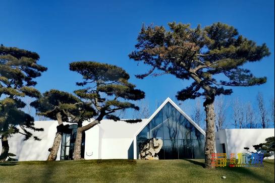 Эти красивые и новаторские художественный музеи не пропустите