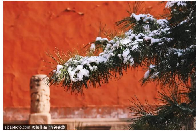 北京这些地方已经到了最美的季节!每年的光影传奇即将上演~