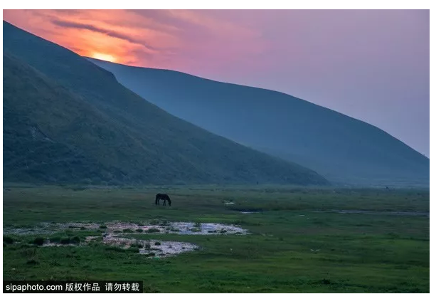 The first meadow grassland in North Beijing is a wonderful place to eat, live and play