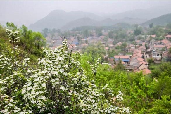 昌平這個古村鎮,有顏值、美食和故事,周末約嗎?