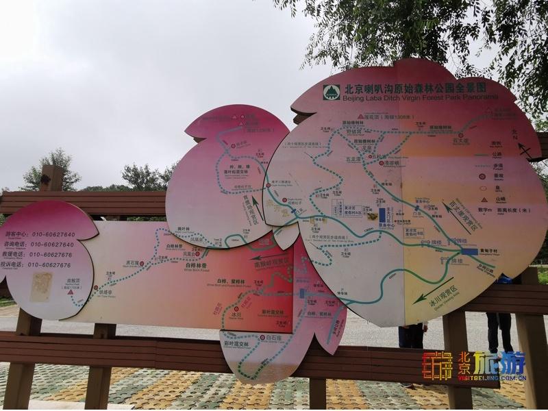 來北京喇嘛溝原始森林公園,享受涼爽的夏天