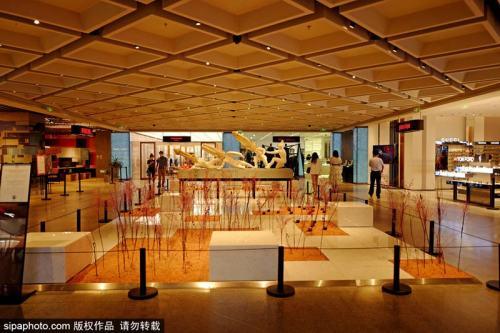 """首店""""扎堆""""北京CBD,14家新店集中在这里亮相"""