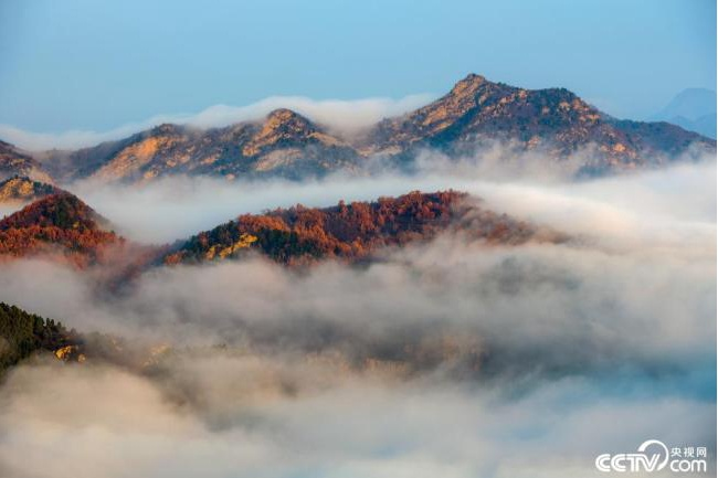 Осенние пейзажи в горах пригорода Пекина