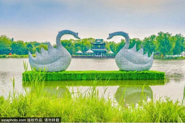 首屆北京網紅打卡地:北京國際鮮花港